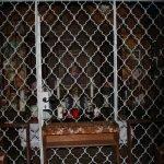 innen kappelle am mueller bründel 150x150 - Ausflugsziel Müllner Bründel bei Buch am Buchrain